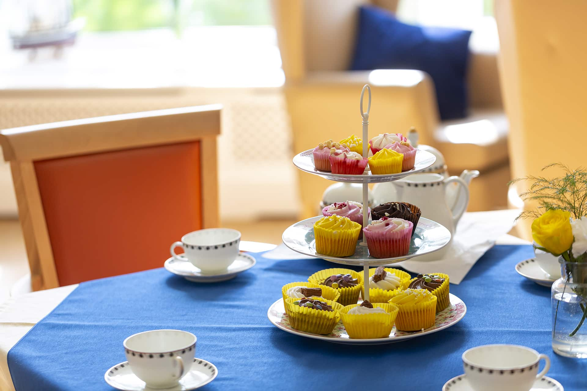 Stambridge Meadows Care Home afternoon tea cakes