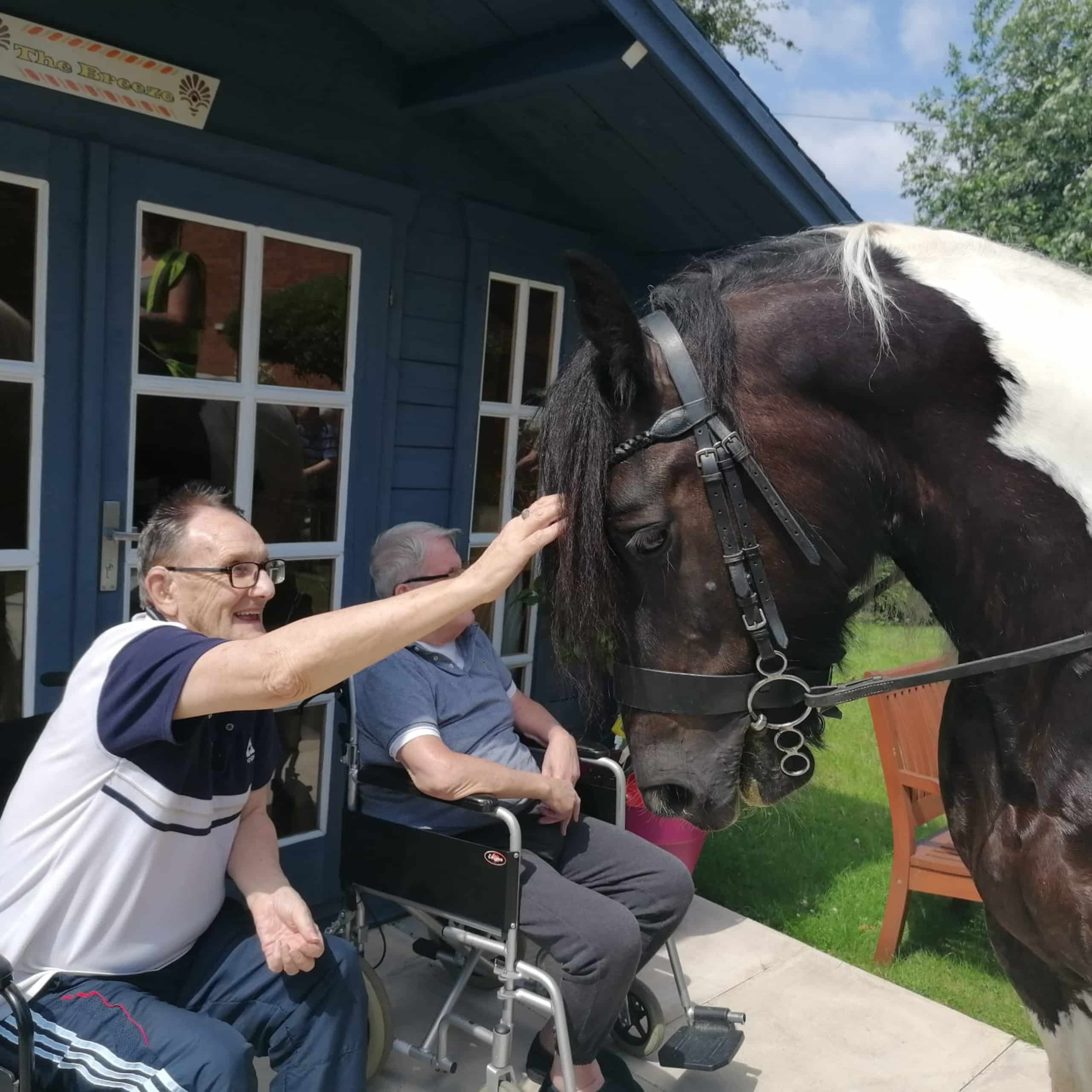Residents at Manchester care home The Chanters enjoying a garden visit from Splodge the horse.